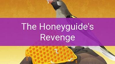 Preview for The Honeyguide's Revenge